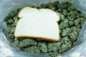 dried-out-weed-300x200.jpg
